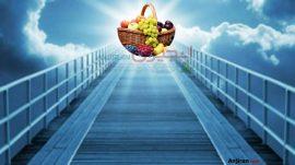 هر آنچه در مورد تعبیر خواب میوه نیاز دارید