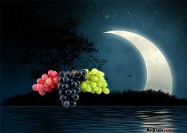 مرجع کامل تعبیر خواب انگور, کشمش و مویز