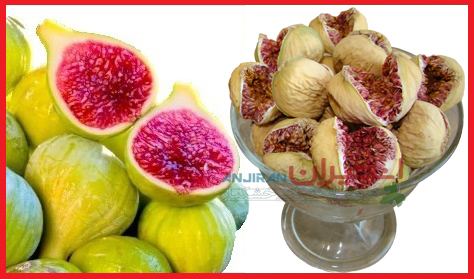 Buy Figs; Choose the Best Fresh Figs and Dried Ones