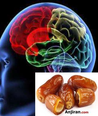 نقش خرما در سلامت مغز
