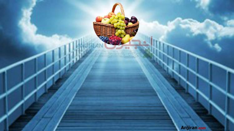 تعبیر خواب میوه