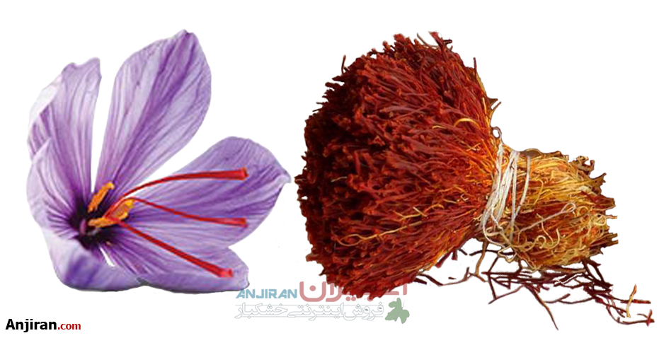 Iranian Saffron Types, Similarities and Differences